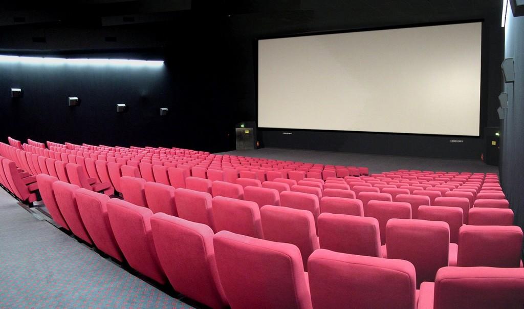 [Image: Cineville-La-Roche-sur-Yon-85-loi-4.jpg?width=1024]