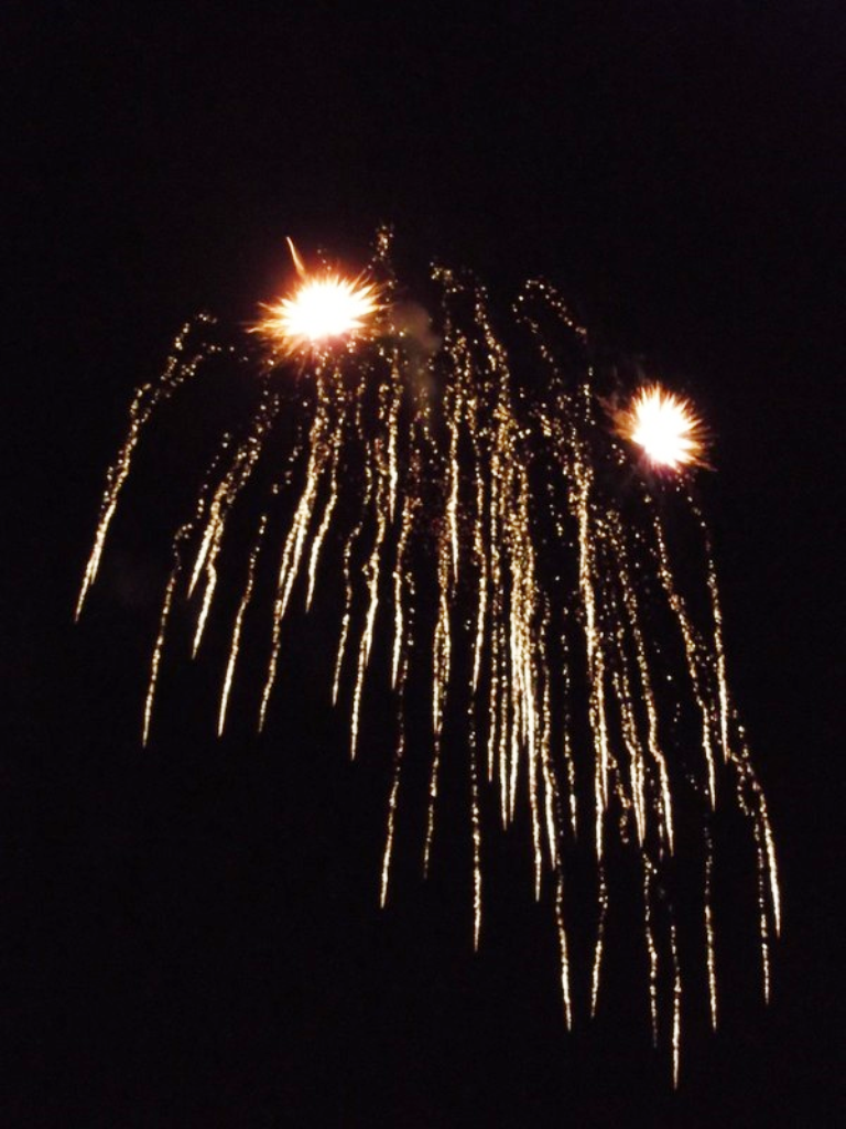 http://cdt44.media.tourinsoft.eu/upload/FEU-d-artifice.png