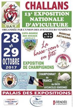 expositon-aviculture-de-challans-en-vendee-octobre-2017-115474
