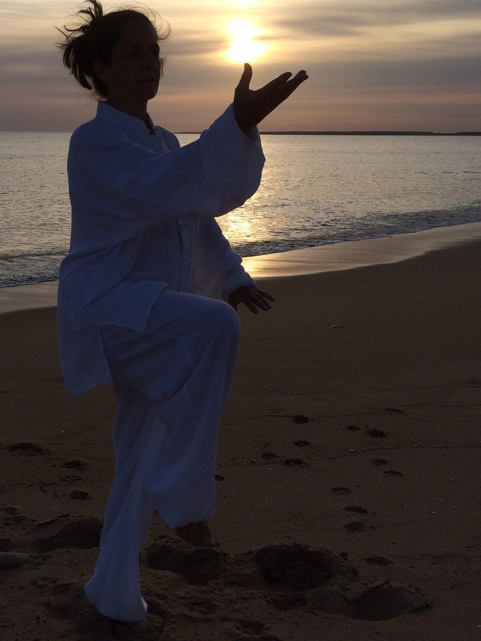 cours-qi-gong-vendee